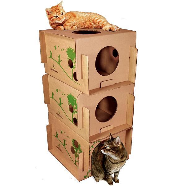 Beliche para Gatos Reciclado 5