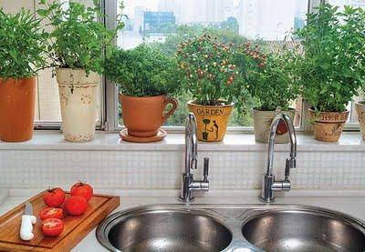 Como decorar com plantas 2