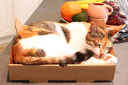 Caixa de pizza na decoração 6