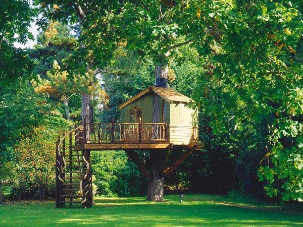 como montar uma casa na árvore
