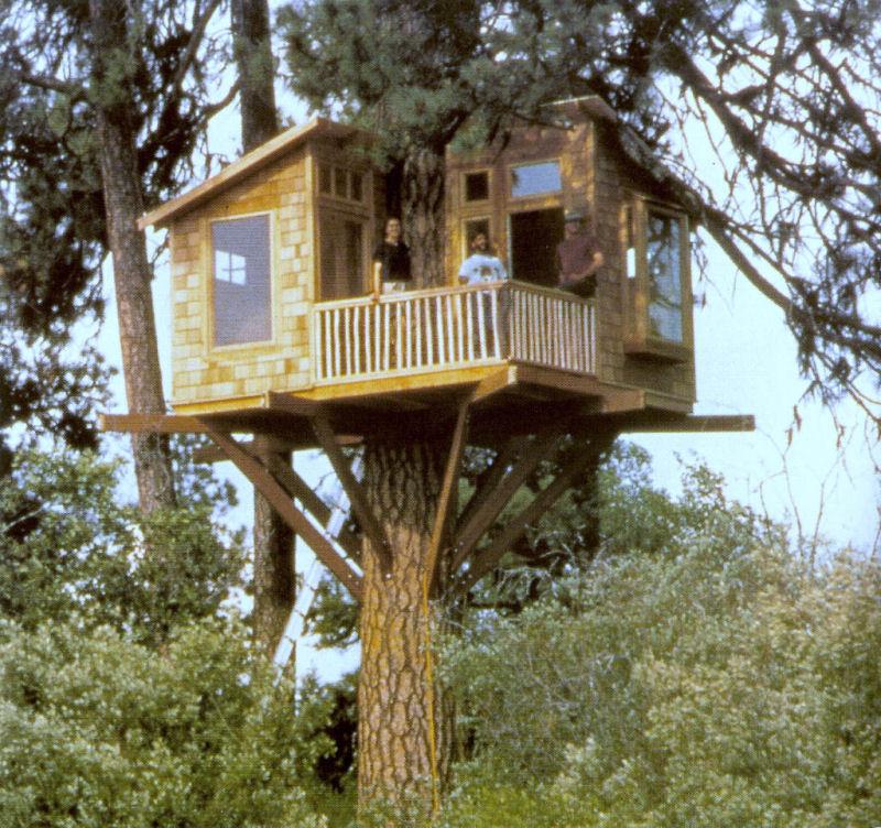 como montar uma casa na árvore 3