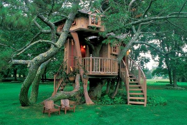 como montar uma casa na árvore 8