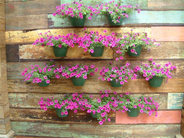 flores para jardim vertical na sombraJardim vertical
