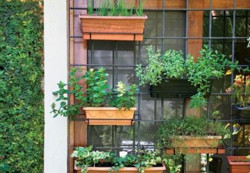 Jardim e horta vertical 2