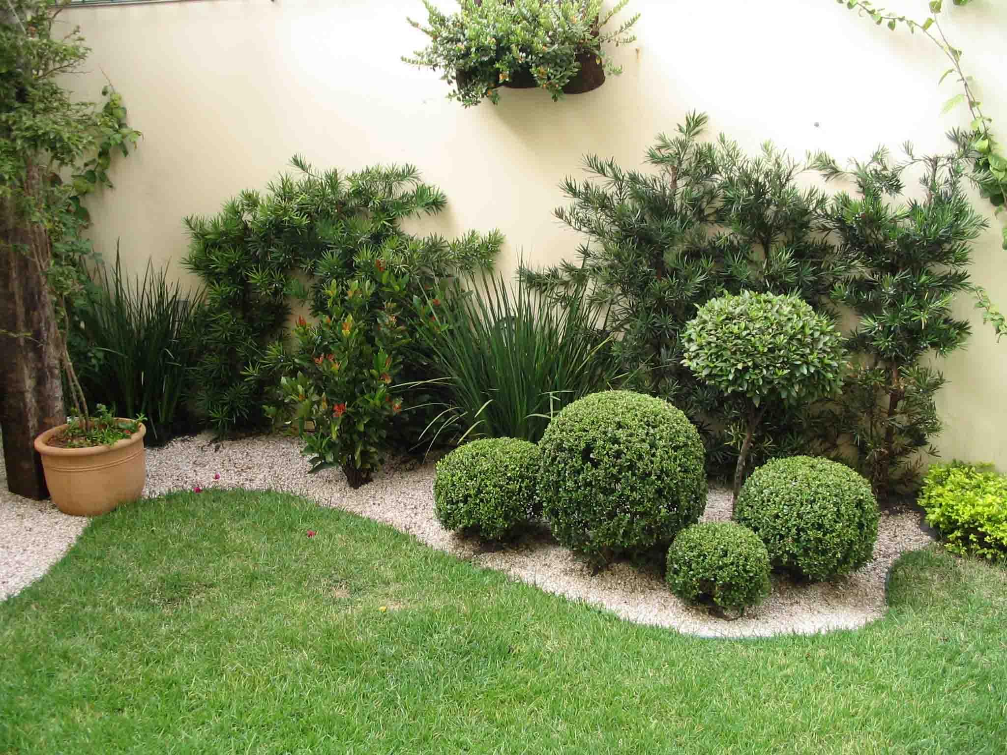 Natureza em casa 10