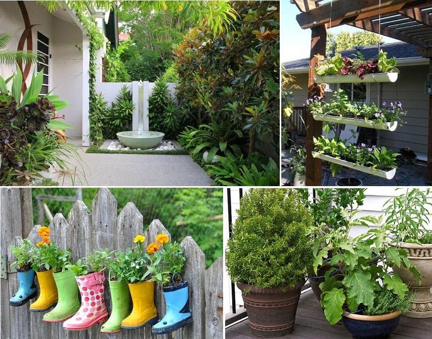 Natureza em casa 7