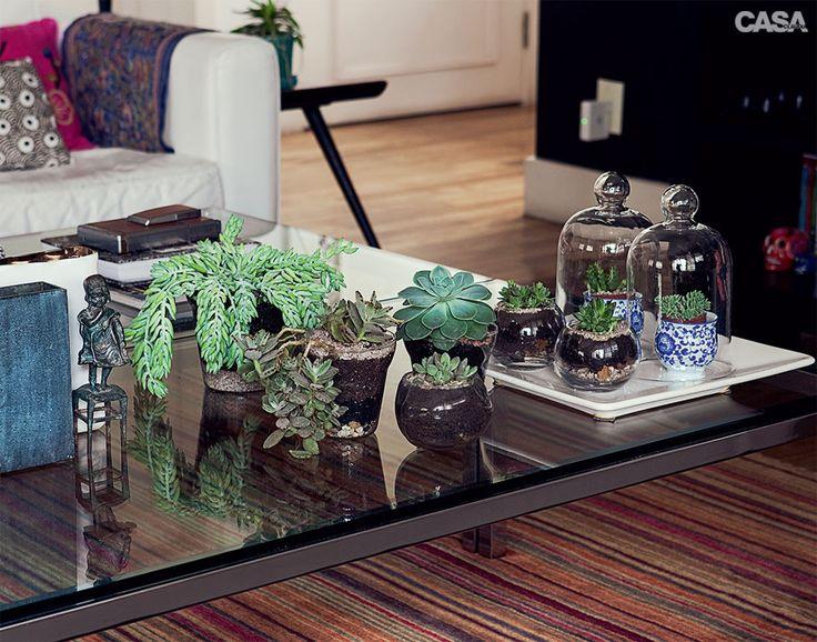 Plantas suculentas na decoração 9
