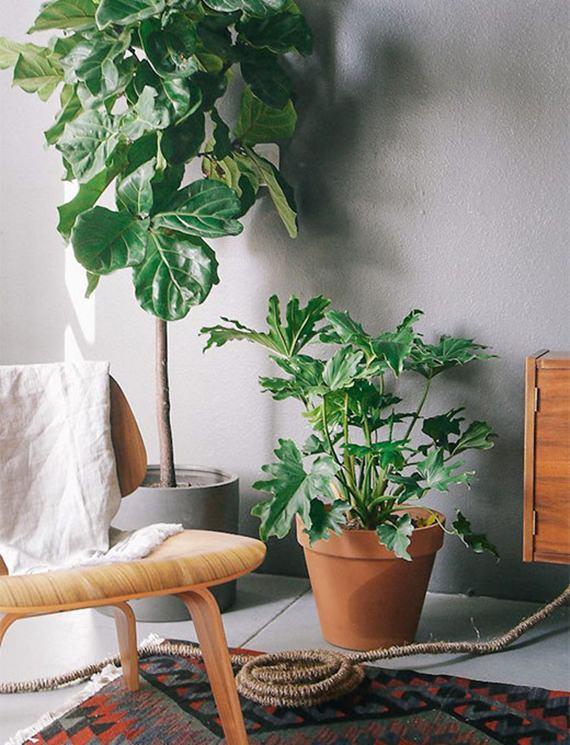 Como montar uma decoração tropical 9