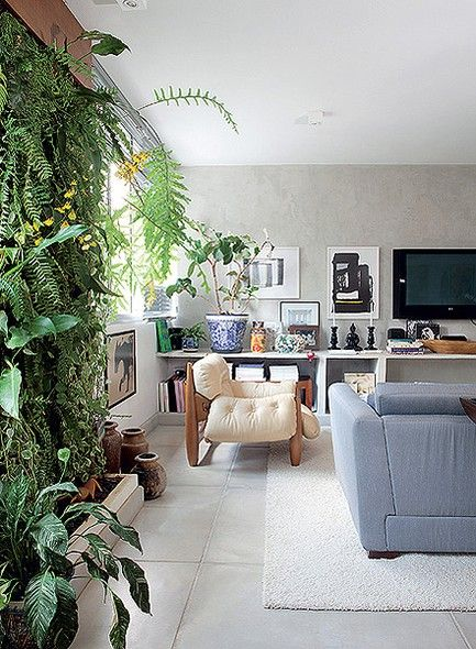 plantas na vertical na decoração 2
