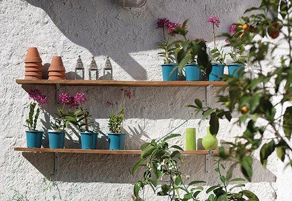 plantas na vertical na decoração 3