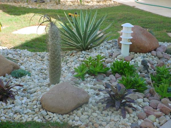Decoração de Jardim com Pedras - Fotos 4