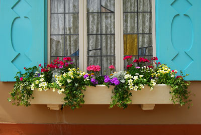 Jardineiras na decoração 5