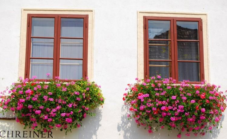 Jardineiras na decoração 6
