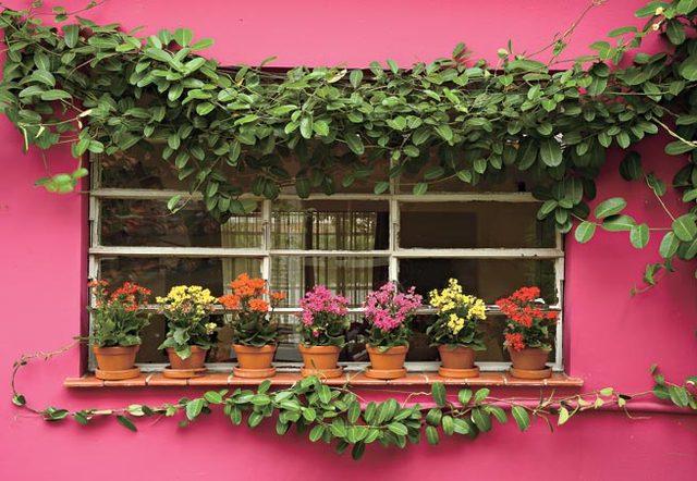 Jardineiras na decoração 7
